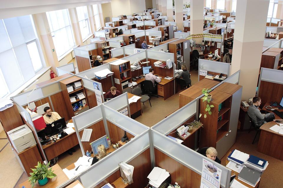 empleabilidad empleo temporal